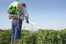 Human applying pesticides to crops with a handheld applicator