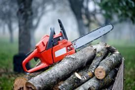 Chainsaw LANTRA Somerset Rural Training